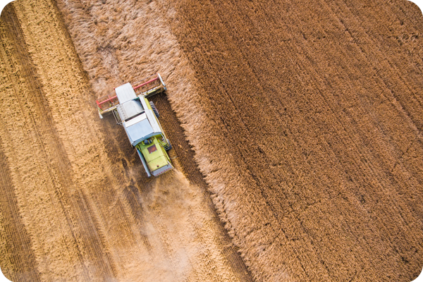 combine-harvester-at-work-from-birds-eye-view-600px-round